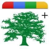 Google+: ritroviamoci nella cerchia