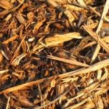"""Biomasse e solare termico integrati: il progetto """"CUBIS"""" in sperimentazione nel penitenziario di Bollate"""